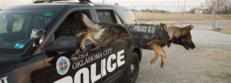 Oklahoma City Department Arrest Records City Of Okc