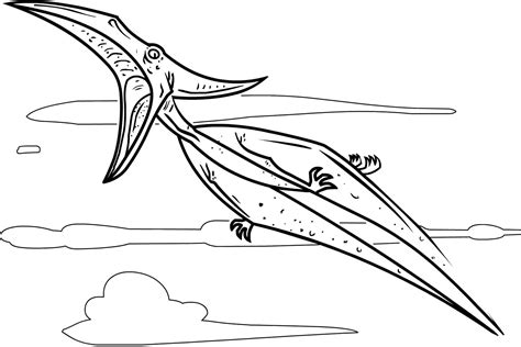 Pterodactyl Coloring Pages Dinosaurs Pictures And Facts Pteranodon Coloring Pages