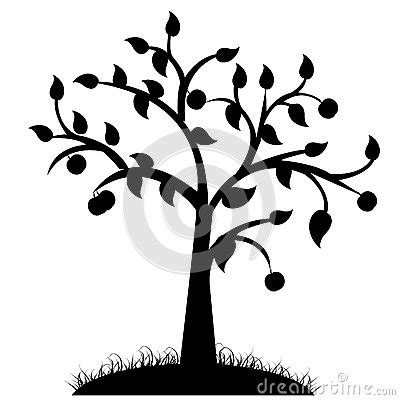 tree silhouette stock photography image: 32506602