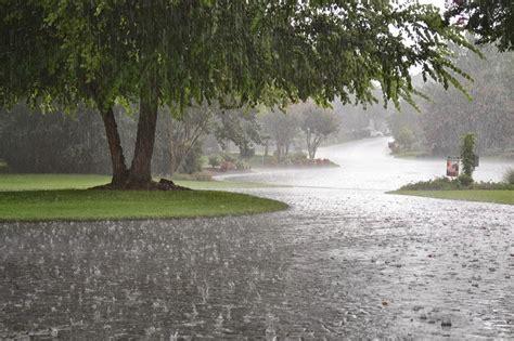 imagenes de otoño y lluvia las mejores apps de alarmas de lluvia