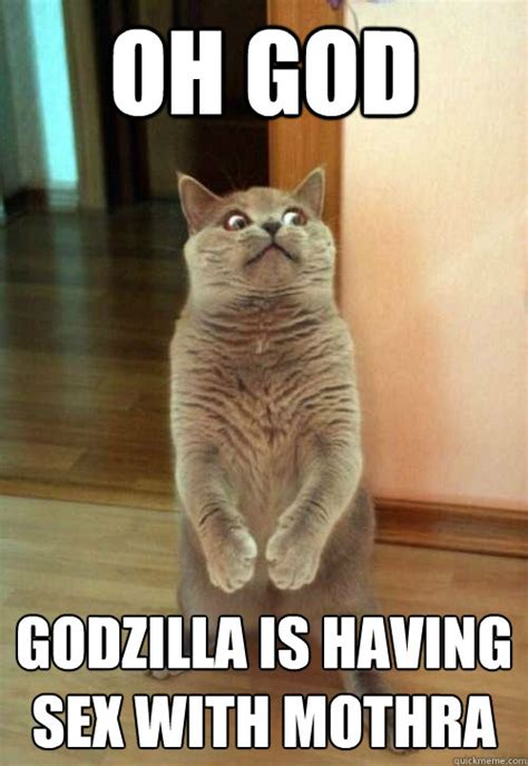 Sexy Cat Memes - oh god godzilla cat meme cat planet cat planet