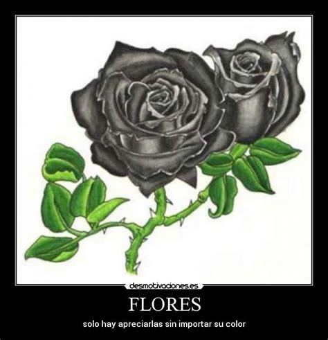 imagenes de flores negras reales imagenes derosas negras imagui
