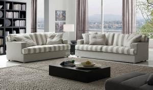 Living room couches modern design , 2 seater & 3 seater