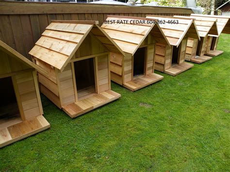 pictures of dog houses best rate cedar