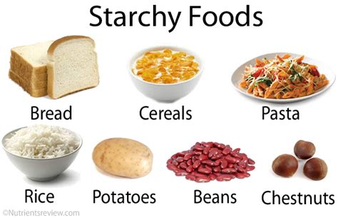 carbohydrates starch starch foods digestion glycemic index