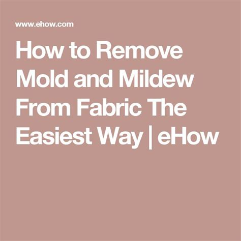 how to remove mold and mildew from fabric the easiest way