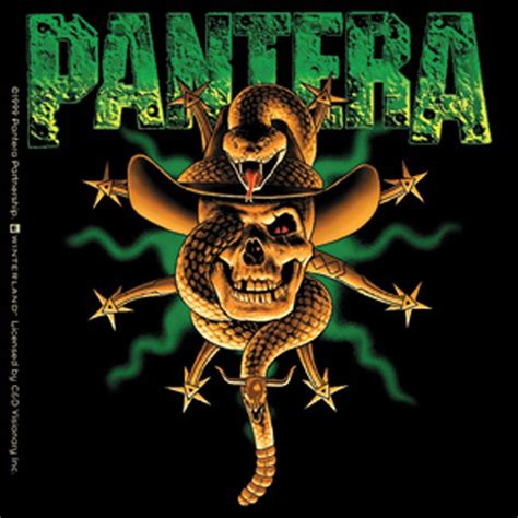 Tattoo Home Decor by Pantera Snake In Skull Sticker