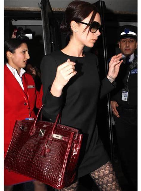 Beckham Camellia chapter 1 it s not a bag it s a birkin the bag book