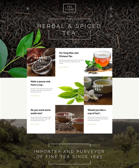 shopify themes tea 9 of the best shopify themes for tea coffee stores down