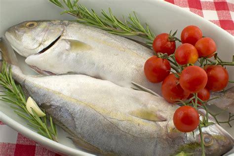 migliori peggiori alimenti gruppo sanguigno 0 ricciola dieta gruppo sanguigno