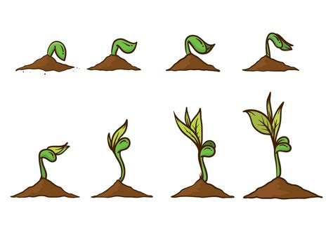 Grow Up free grow up plant vector free vector
