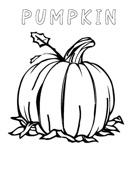 thanksgiving pumpkins coloring pages pumpkins coloring pages to celebrate thanksgiving learn