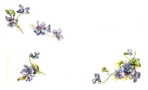 printable forget me not flowers 7 best images of free printable flower art dogwood