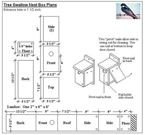 kestrel house plans kestrel bird house plans new triangle bird box google search garden ideas new home