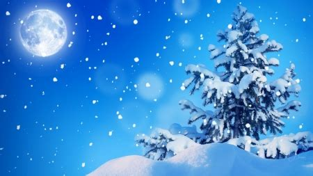 firefox themes snow tree at the top winter nature background wallpapers on