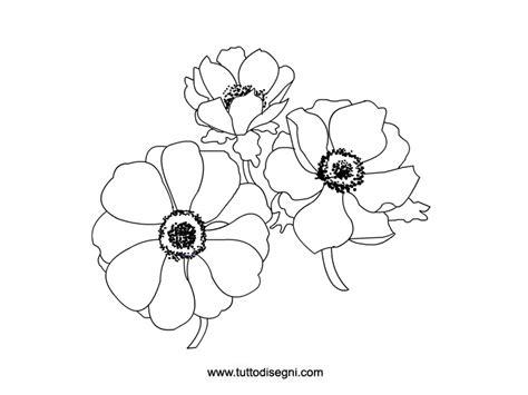 disegnare i fiori anemoni fiori da colorare tuttodisegni