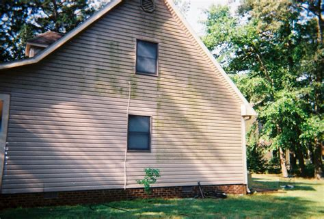 algae on house siding discount cleaning products removing green algae from