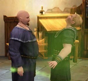 the sims medieval physician hero guide sim doctor