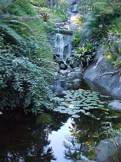 Sd Botanical Garden San Diego Botanic Gardens Encinitas Ca California Beaches