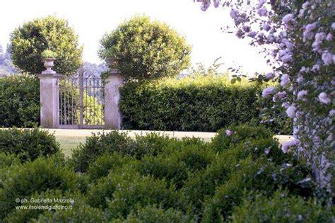 Il Sole Nel Giardino 7 best gardens designed by il sole nel giardino