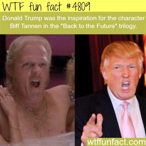 Unique Facts About Donald by Best 25 Strange Facts Ideas On Facts