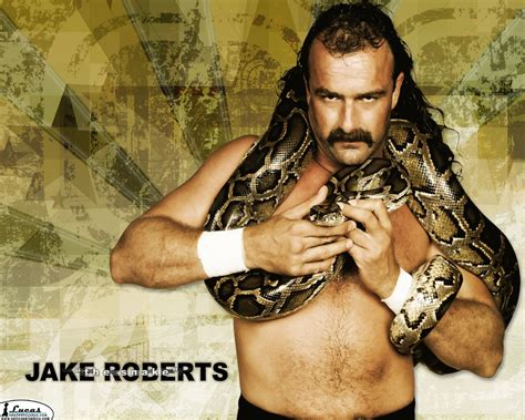 classic wwf wallpaper jake quot the snake quot roberts classic wwf professional