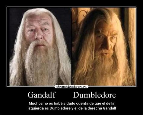 actor gandalf y dumbledore gandalf dumbledore desmotivaciones