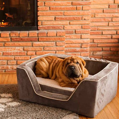 luxury dog houses uk luxury square dog bed with memory foam by snoozer pet products