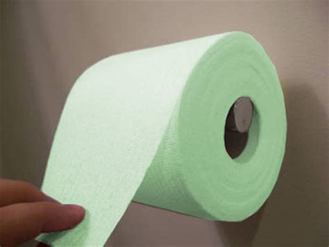 How To Make Glow In The Toilet Paper - toliet paper 2017 grasscloth wallpaper