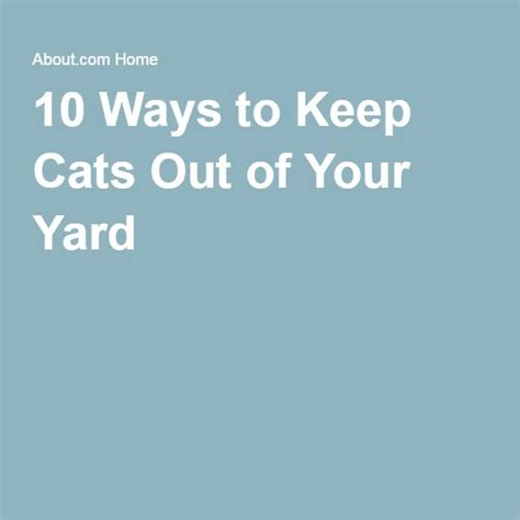17 Best Images About Tuin On Pinterest Gardens Reuse How To Keep Cats Out Of Your Backyard
