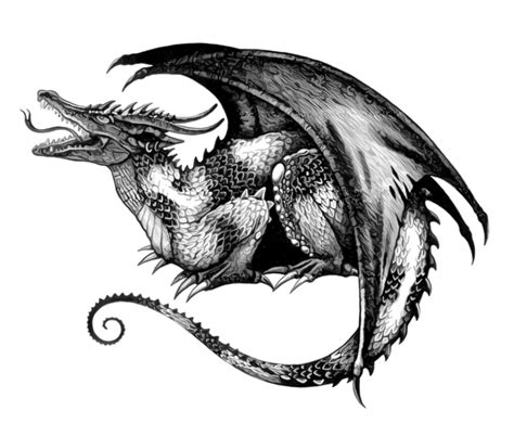 dragon tattoo designs black and white black white graphic color tattoos part 4 3d