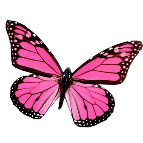 imagenes png mariposas mariposa png de juli gonz 225 lez vitrales patrones