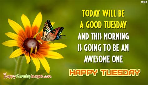 Tuesday Is Today happy tuesday sayings today will be a tuesday