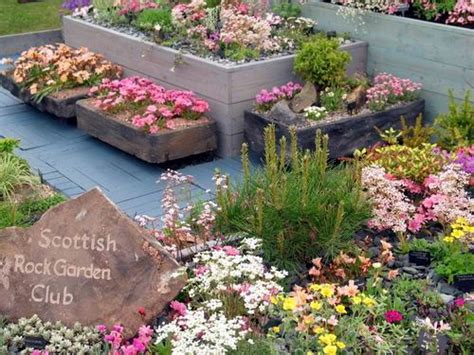 Scottish Rock Garden Society Scottish Rock Garden Club Another Gold