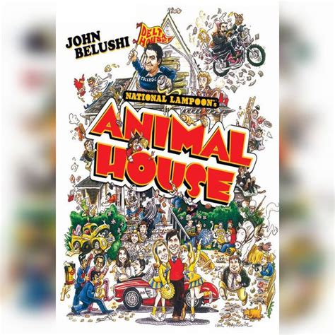 national loon animal house national loon s animal house 28 images the 25 best ideas about national loon s