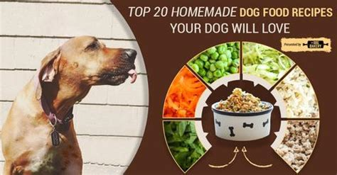 homemade dog food for dogs with liver cancer | crazy homemade