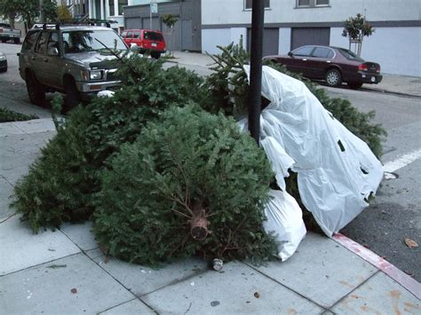 christmas tree collection sutton borough