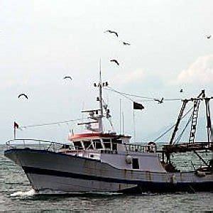 ufficio circondariale marittimo porto santo stefano 140 chili di pesce sequestrato sulla costa maremmana