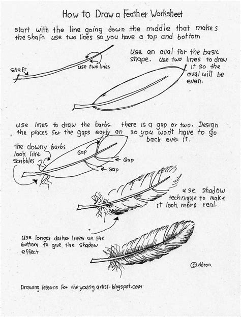 Drawing Y Mx C Worksheet by How To Draw A Feather Worksheet See More At My Http