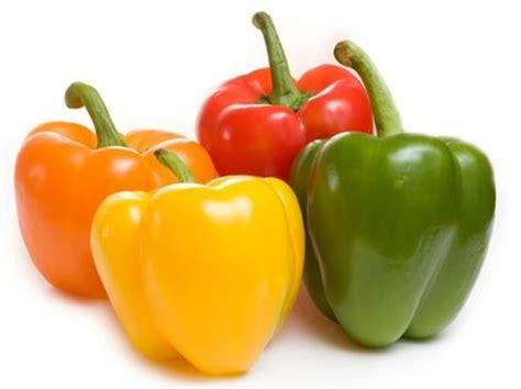 manfaat paprika bagi kesehatan   tangkal kanker