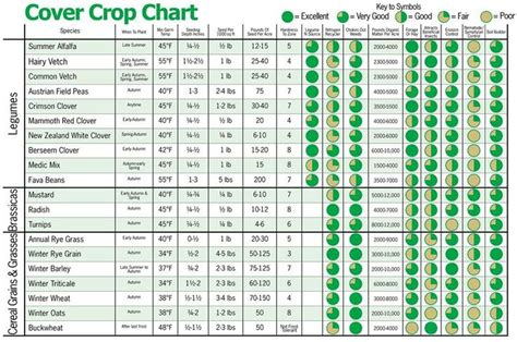 Vegetable Garden Fertilizer Chart Cover Crop Chart Handy For Soil Building On A Larger