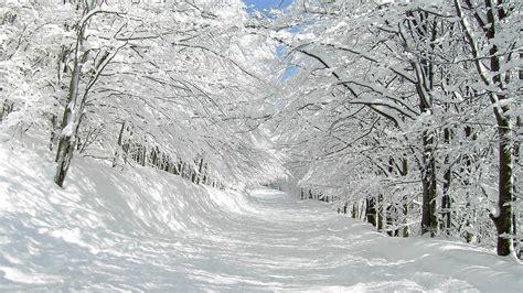 imagenes de invierno muy frio descargar 1920x1080 naturaleza de invierno paisajes
