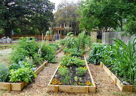 urban agriculture  community garden challenge