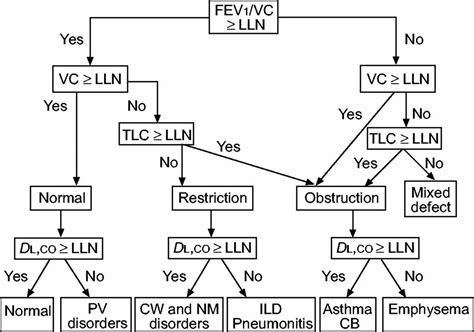 An Approach To Interpreting Spirometry American Family Physician 236122550547 Flow Chart Pft Interpretation Template