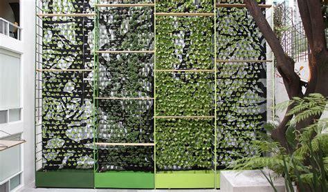 vertical lettuce garden garden design vertical gardens