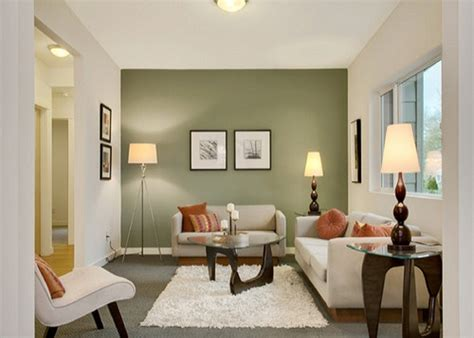 painting comfortable small living room with green colored