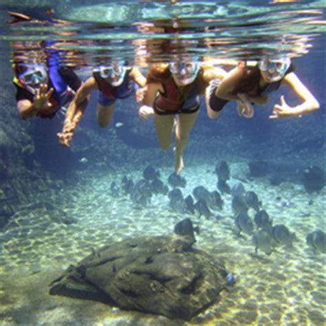gondola boat ride at ushaka ushaka marine world pictures check out ushaka marine