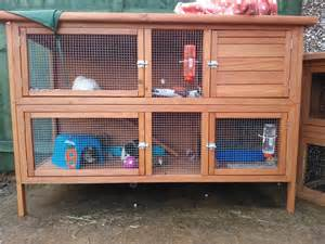 Outdoor Rabbit Hutch Plans Guinea Pig Hutch Tour August 2013 Youtube