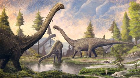 sauropods grew big  munching superfoods  sturdy