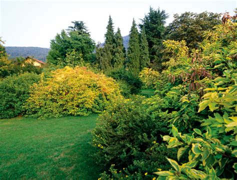 giardini invernali giardini